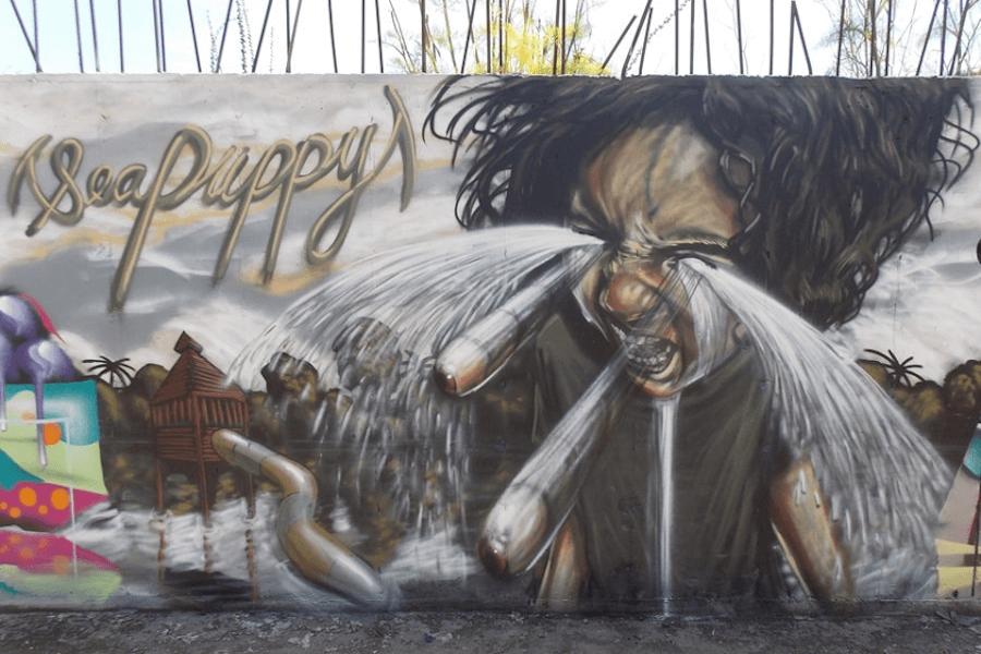 Graffiti mural by Sea Puppy
